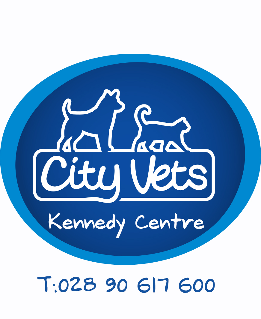 City Vets Andersonstown Road
